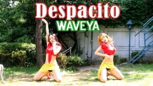 超セクシーなダンスに思わず見入る。Waveyaによる「Despacito」!