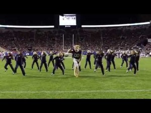 アメリカ一踊れるマスコット!?クーガーが見せるキレキレのカッコイイダンスパフォーマンス!